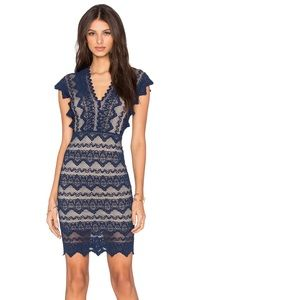 Nightcap Antoinette Dress Navy Nude Lace Scalloped